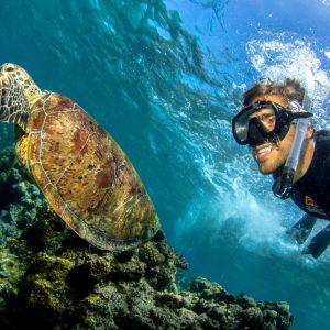 Great Barrier Reef liveaboard Snorkelling