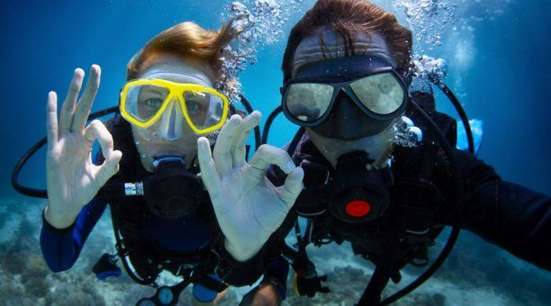 Explore beautiful dive sites around the Whitsundays